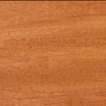 Genuine mahogany wood grain scan