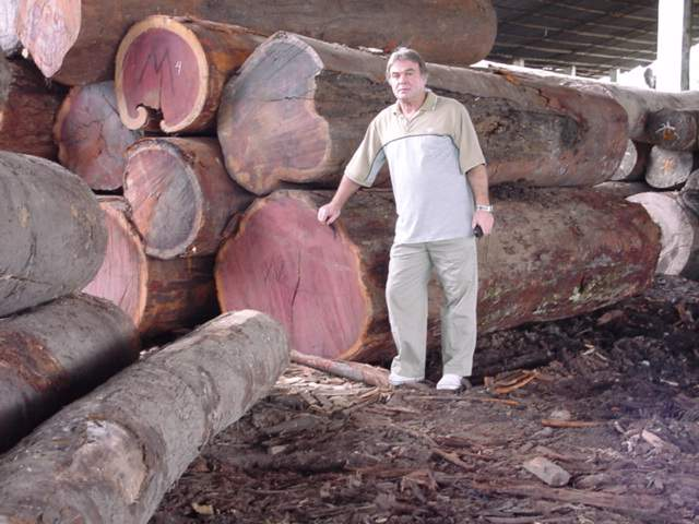 Purple Heart Lumber ~ Logging in the amazon a jungle lumberman shows us what it