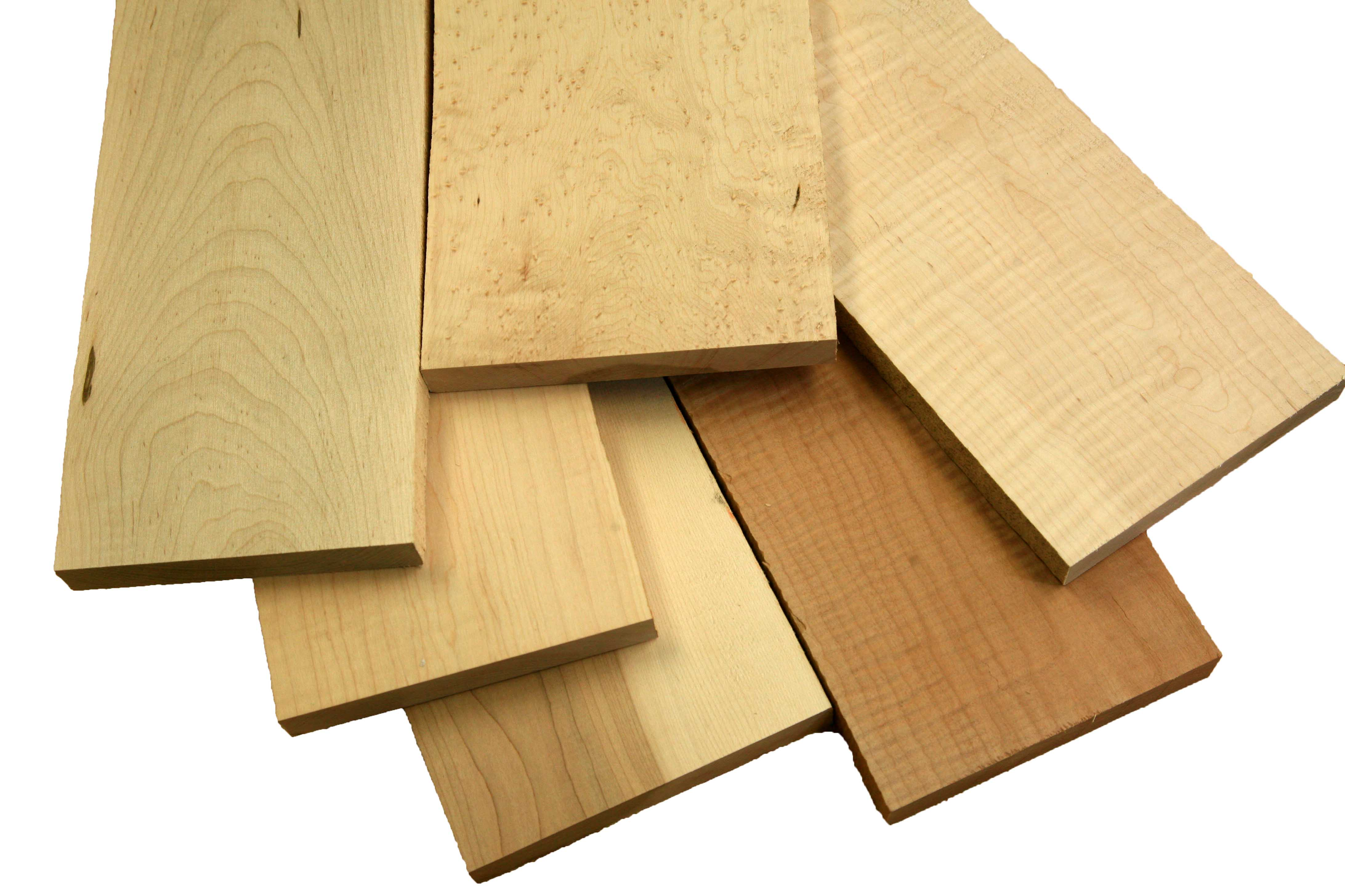 All Maple Varieties on sale for woodworkers