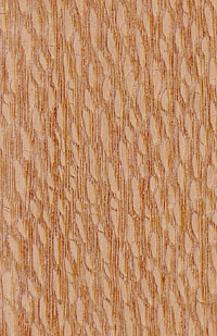 lacewood veneer